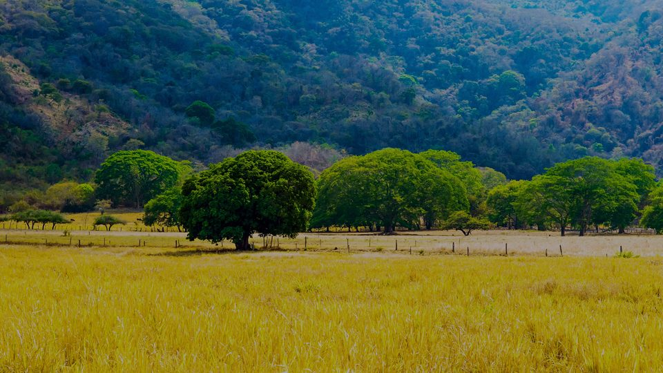Guanacaste, the luxury real estate area in Costa Rica